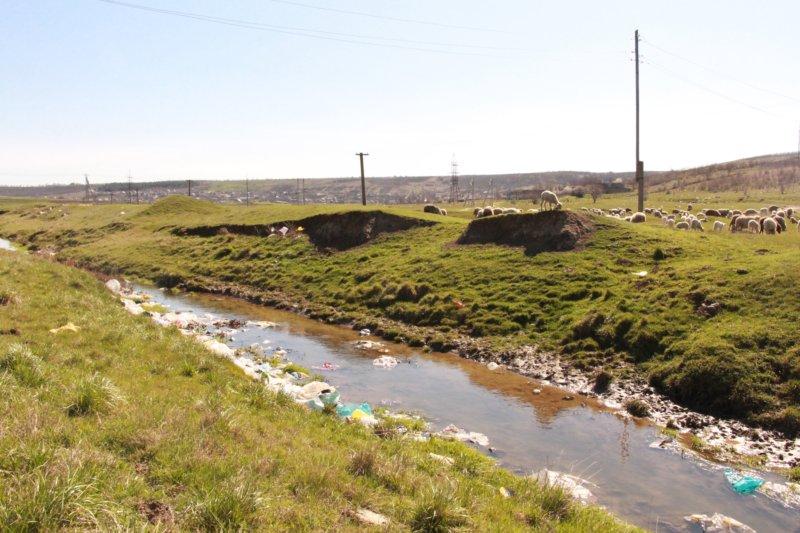 Râul Tigheci, plin cu deșeuri în urma unei furtuni, 10 aprilie 2016 FOTO Veronica Tabureanu