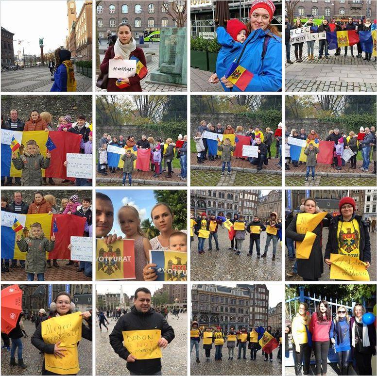 diaspora-protesteaza