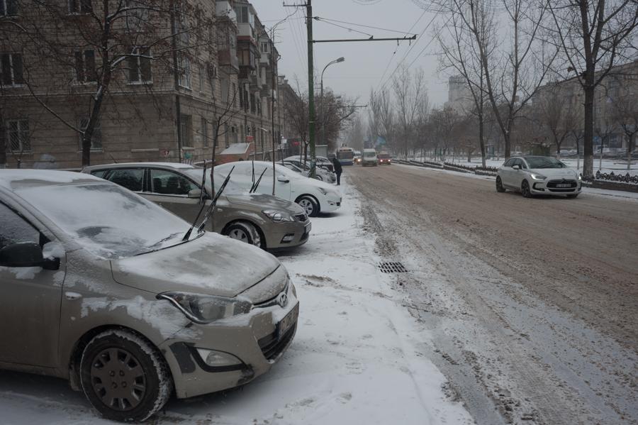 Bd. Grigore Vieru FOTO: Sandu Tarlev